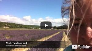 Video 0138: Südfrankreich – mitten im Lavendelfeld :-)