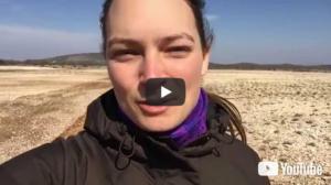 Video 0139: Auf der Helichrysum-Farm in Kroatien